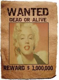 Wanted Poster. La tua foto in una scaletta di leggendario nella ricerca e cattura, vivo o morto, premio, un milione. Salvare o inviare il fotomontaggio come souvenir o curiosità.