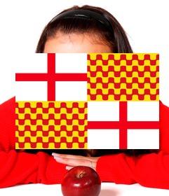 bandera tabarnia foto perfil