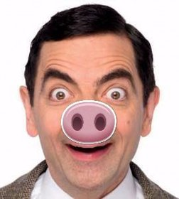 Pig nose to paste in your images effect online