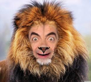 Fotomontaggio di un leone per mettere la vostra faccia in linea