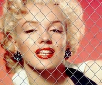 Effet photo de garde-corps de la clôture pour mettre en face de votre photo.