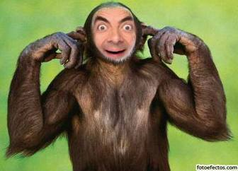 Ejemplo: Photomontage of monkey custom, very funny! put a face to this chimpanzee covers his ears. What you can send as a joke.