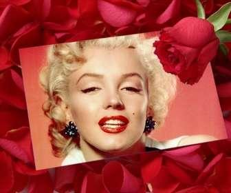 Ejemplo: Pon una foto en una Carta de amor con una rosa y fondo de pétalos de rosa.