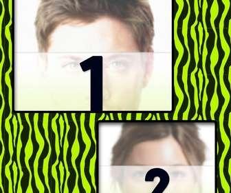 crea un collage dibujo cebra verde amarillo fotos tuyas online