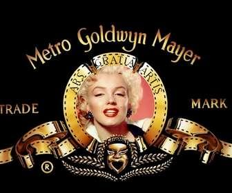 Ejemplo: Quer ser o leão do famoso Metro Goldwyn Mayer, criar sua própria legenda e tornar-se famoso ;)