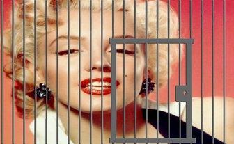 Fotomontagem de uma célula para incluir suas imagens on-line