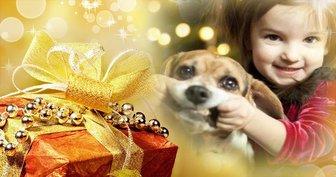 Weihnachten Filter Ihr Foto setzen zusammen mit einem Geschenk und verwenden Sie es als Abdeckung