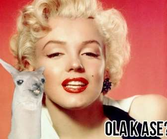 """Create a photomontage easy with flame meme """"Ola k ase?"""" and add text for free online."""