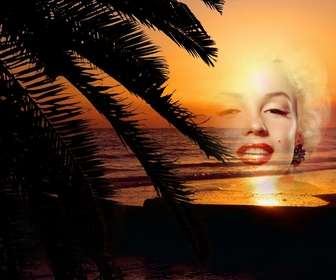 Ejemplo: Puesta de sol en un paisaje idílico en el que vemos una playa tras unas hojas de palmera para poner una foto online y crear un collage