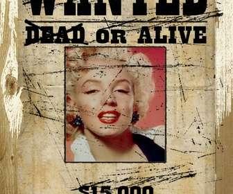Ejemplo: Fotomontaje en que tu fotografía aparece en un marco de un cartel de se busca, vivo o muerto, donde ofrecen una recompensa.