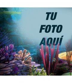 Tu foto en el océano con corales subiéndola a este foto efecto online