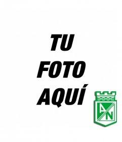 Fotomontaje en el que puedes poner una foto de fondo con el escudo del Atletico Nacional