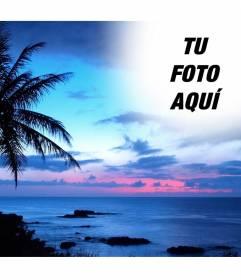 Montaje para fotos de puesta de sol, con un cielo azul en un paisaje de costa idílico, en el que vemos una gran palmera.