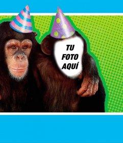 Fotomontaje con un mono disfrazado con un gorro de fiesta