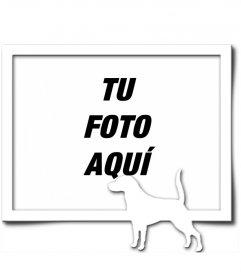 Marco para una fotografía digital, que consta de un borde gris y la silueta en blanco de un perro con el rabo levantado, como si hubiera encontrado un rastro.