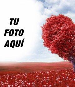 Fotomontaje De Paisaje Con Arbol En Forma De Corazón Fotoefectos