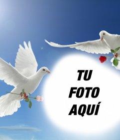 Fotomontaje de la Paz con dos palomas blancas volando