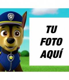 Fotomontaje de la Patrulla Canina para subir una foto