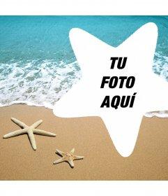 Foto efecto para editar con tu foto y añadirla dentro de una estrella de mar