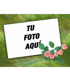 Marco para fotos personalizable con tu foto con fondo verde y adorno de rosas