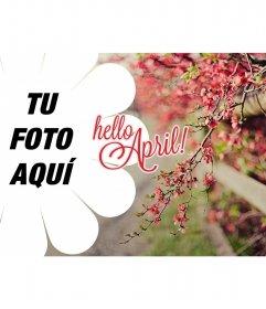 Wallpaper de primavera con el texto Hello April!