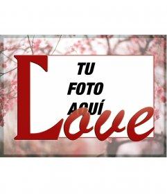 Enmarca tu foto sobre un fondo de cerezos en flor y la palabra LOVE