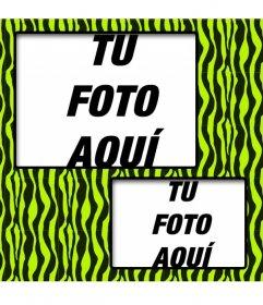 Crea un collage con dibujo de cebra verde y amarillo y dos fotos tuyas online.