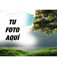 Fotomontaje con un paisaje con el mar de fondo y un árbol en el verde campo en el que puedes subir una foto que aparecerá integrada con el cielo azul