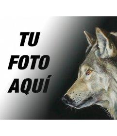 Fotomontaje Con Una Foto De Un Lobo Para Hacer Collages Con