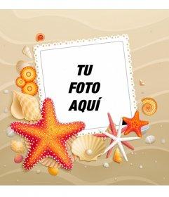 Personaliza tu avatar con un fondo de playa veraniego con estrellas de mar tanto para facebook como twitter.