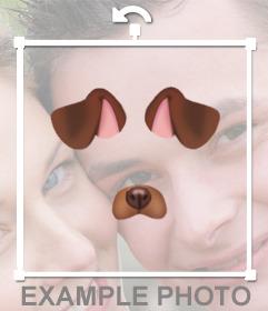 Pega las orejas y nariz de un perrito en tus fotos gratis