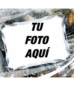 Marco para fotos con motivos de invierno y de navidad