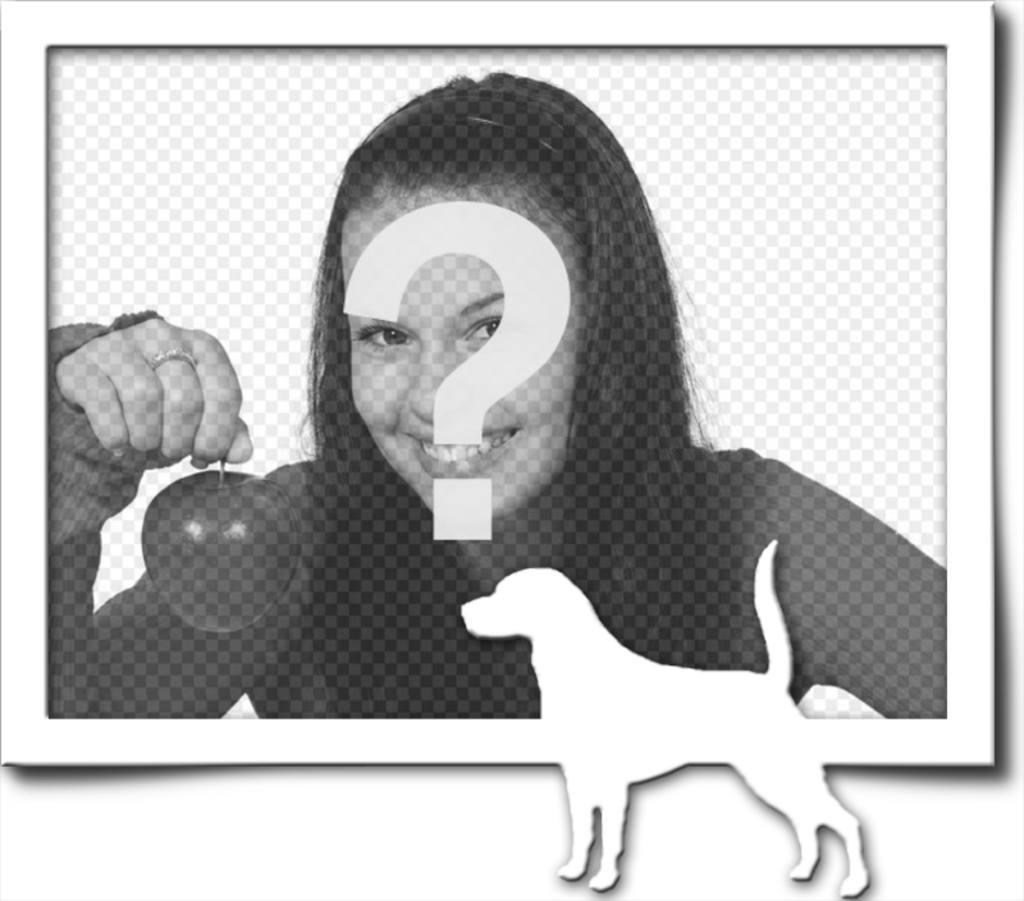 marco fotografia digital consta un borde gris silueta blanco un perro rabo levantado hubiera encontrado un rastro