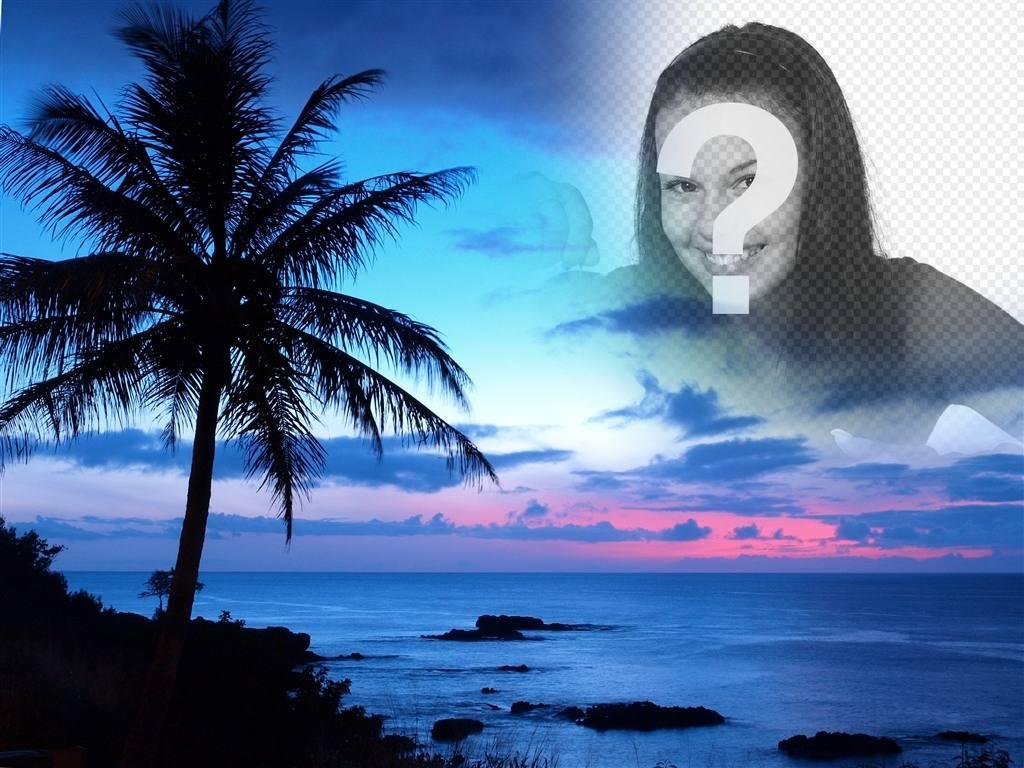 montaje fotos puesta sol un cielo azul un paisaje costa idilico vemos gran palmera