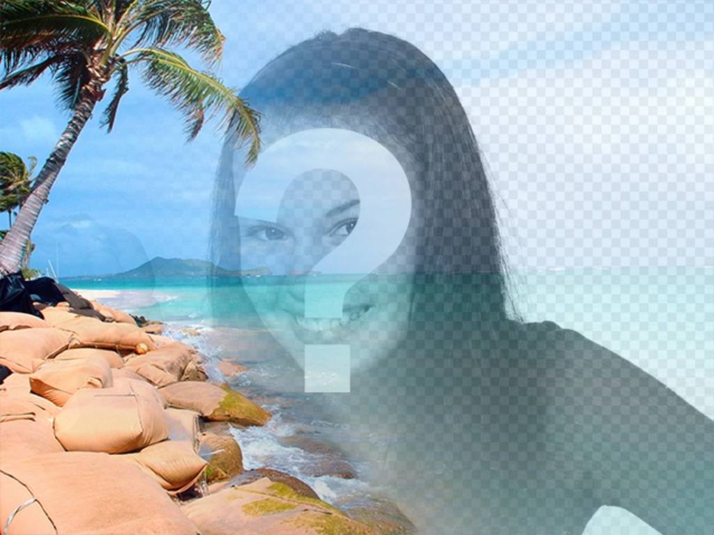 collage playa paradisiaca agua azul palmeras poner foto personalizar un texto