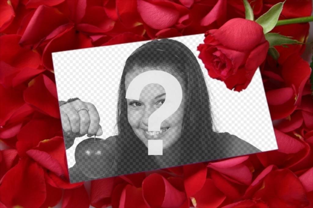 pon foto carta amor rosa fondo petalos rosa