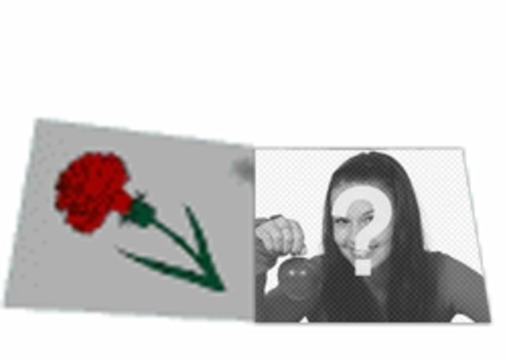 animacion personalizada carta amor animada rosa foto