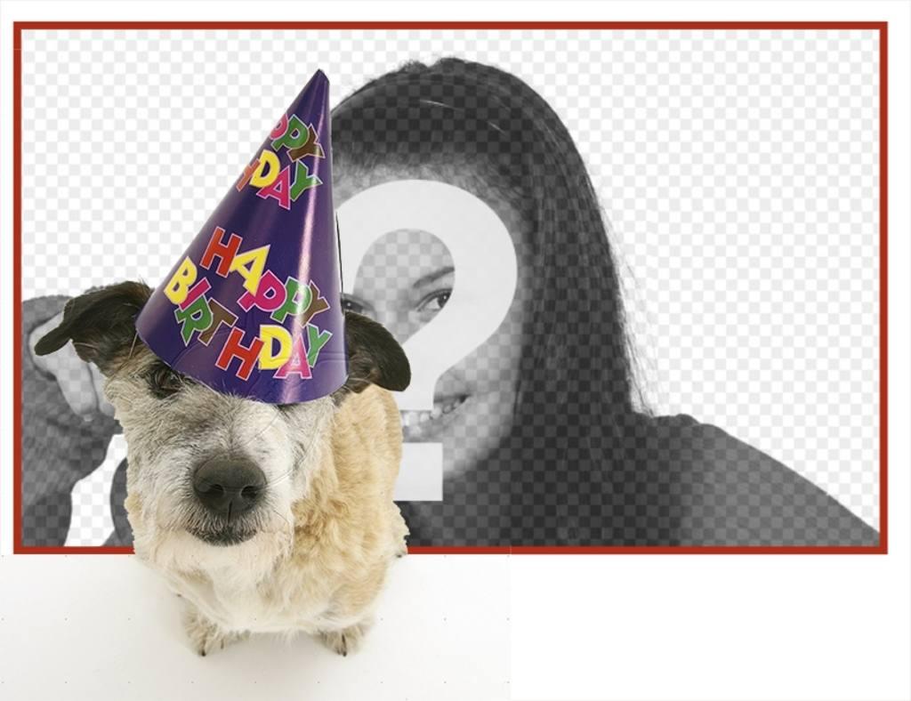 Marco de cumpleaños con un perrito con gorro de fiesta en primer ...