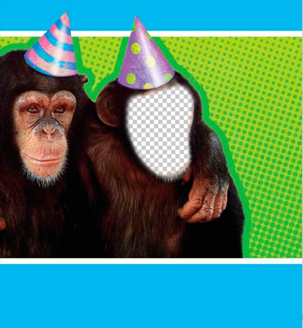 fotomontaje un mono disfrazado un gorro fiesta