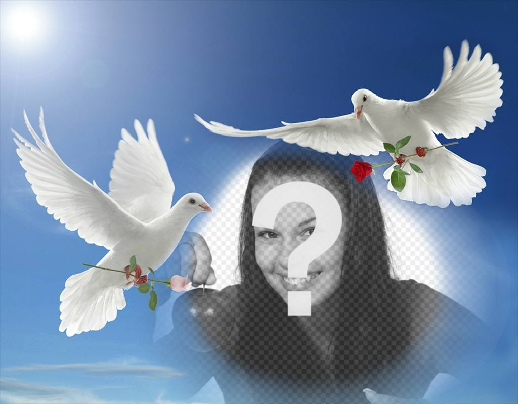fotomontaje paz palomas blancas volando