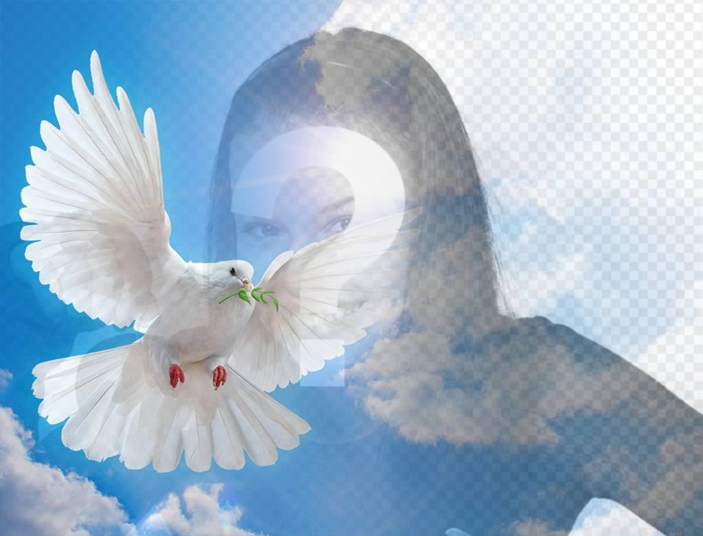 Fotomontaje con la paloma de la Paz para tu foto