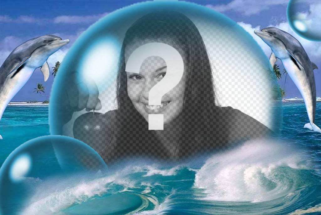 delfines gran burbuja poner foto gratis
