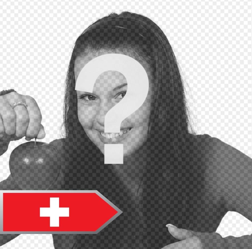 anade flecha bandera suiza fotos gratis