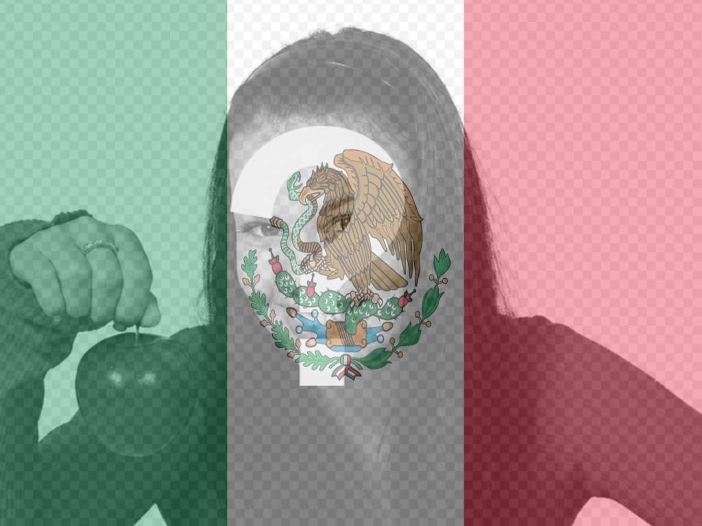 Bandera de México para poner en tu foto con este fotomontaje