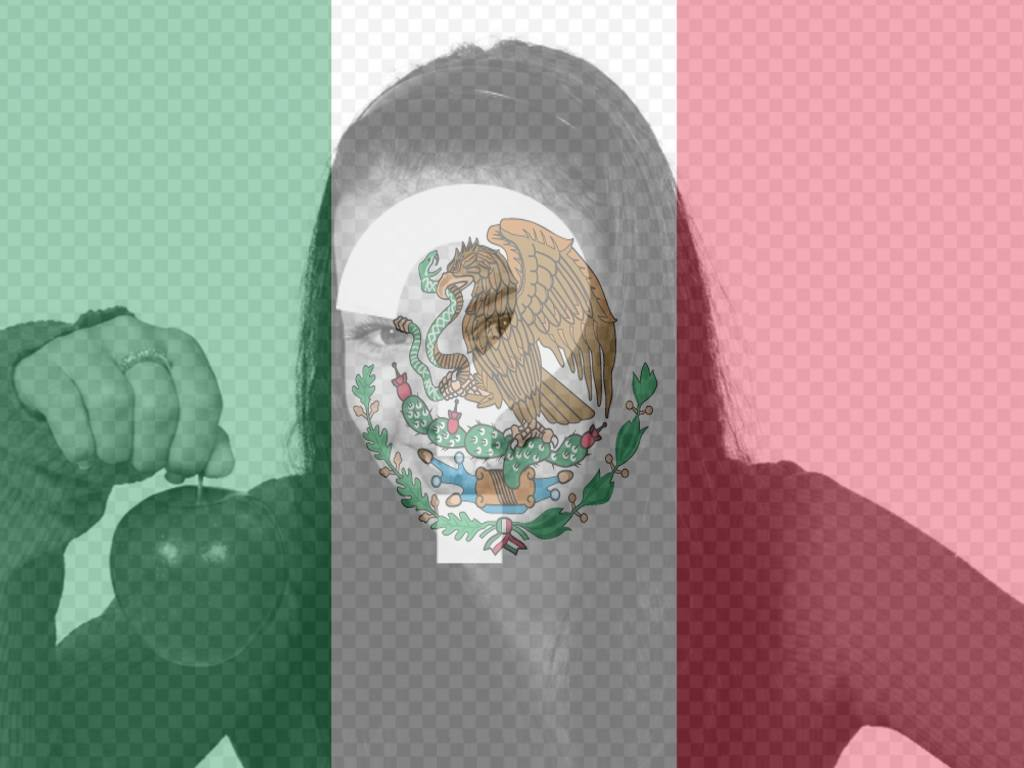 pon foto bandera mexico fotomontaje