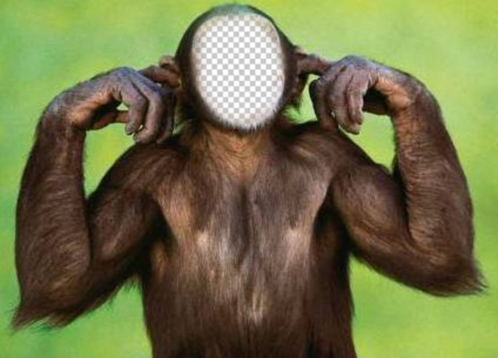 Fotomontaje de mono que no escucha para que edites con tu foto